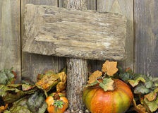 Blank weathered wood sign with autumn border of leaves and pumpkins. Blank weathered wood sign with fall foliage border with pumpkins and acorns Stock Photos