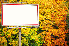 Blank white billboard at the park Stock Images