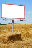 Blank white billboard in a wheat field Royalty Free Stock Image