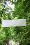 Blank white board banner green trees Royalty Free Stock Image