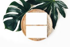 Blank white business cards mockups, wooden plate, aralia and monstera leaf isolated on white table backgound. Modern royalty free stock images