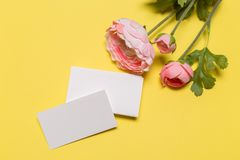 Blank white business cards on yellow background. Mockup for branding identity royalty free stock photos