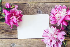 Blank white card and purple peony on old wooden boards. Stock Photos