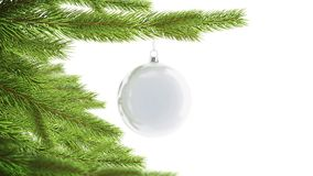 Blank white christmas ball hanging on pine mockup, looped rotation. 3d rendering. Empty spruce branch with decoration toy mock up. Clear rotating sphere for stock footage