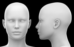 Blank White Female Head - Side and Front view isolated on Black. 3D illustration Royalty Free Stock Image