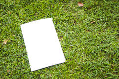 Blank white flyer Stock Photography