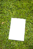 Blank white flyer Royalty Free Stock Image