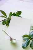 Blank white gift card Stock Image