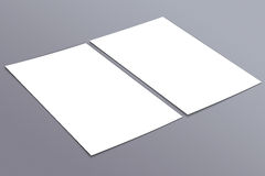 Blank white 4x8 inch flyer collection - 24. Blank white paper flyer isolated on Background Stock Images