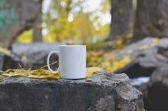 Blank white mug on the forest rocks royalty free stock photo