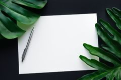 Blank white notepaper with tropical leaves laying on black table Stock Images