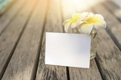 Blank white paper card with beautiful Plumeria flower in glass on wooden floor, royalty free stock photography