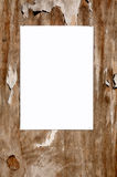 Blank white paper sign. Royalty Free Stock Photos