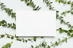 Blank white paper and spring green twigs of plants on gray background top view flat lay copy space. Decorative plant branch,. Rustic background, flowers stock images