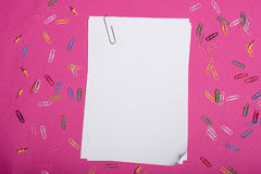 Blank white papers and colorful paper clips isolated on pink. Top view of blank white papers and colorful paper clips isolated on pink Stock Image