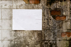 Blank white poster on grunge wall Stock Image