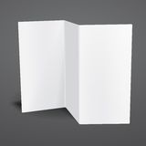 Blank white vector tri fold brochure template. Stock Photo