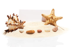 Blank white visit card, starfish, seashell and stones on sand Royalty Free Stock Photography
