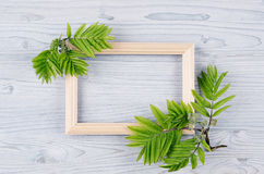 Blank wood frame and young green leaves on light blue wooden board. Decorative spring background with copy space, top view. Royalty Free Stock Image