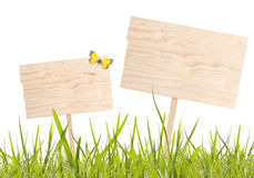 Blank wooden board with spring grass. On white background royalty free stock image