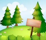 A blank wooden sign board in the forest Stock Photos