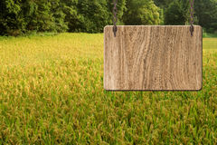 Blank wooden sign Royalty Free Stock Images