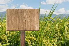 Blank wooden sign Royalty Free Stock Photo