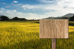 Blank wooden sign Royalty Free Stock Photography