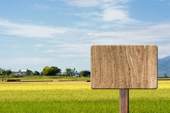 Blank wooden sign Stock Image