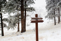 Blank wooden sign in snow scene Royalty Free Stock Photo