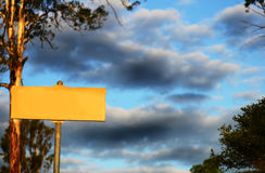 Blank yellow sign with storm clouds & huge Gum tree Stock Photo