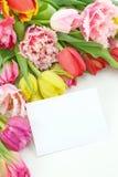 blanka färgrika anmärkningstulpan Royaltyfria Bilder