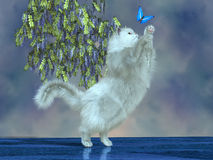Blanka the Garden Cat. Blanka the cat tries to catch a blue butterfly on the garden patio Stock Image