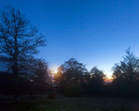 Blanker Wald des Herbstes auf die Nachtgebirgshügeloberseite Lizenzfreie Stockfotos