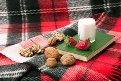 Blanket, book and dessert Royalty Free Stock Photos