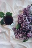 Blanket, Bouquet, Close-up Royalty Free Stock Photo