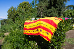 Blanket drying outside. Colorful blanket drying outside on some shrubs at flores, indonesia Stock Photography
