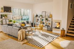 Blanket thrown on grey corner sofa in white living room interior. With fresh plants, carpet, fireplace and simple posters stock images