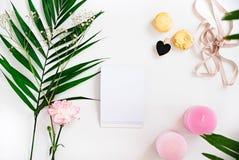 Blanknote, Grün verlässt, Kerzen, Blume, Makronen auf weißem fla Stockfotos