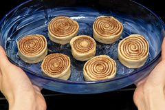 Blanks of cinnamon rolls are in a blue transparent form that is put in the oven stock photos