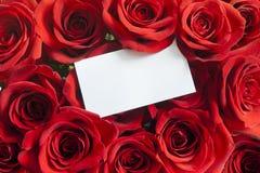 Blankt vitt gåvakort på en röd rose valentin Royaltyfri Fotografi