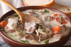 Blanquette of veal in a creamy sauce in a bowl. horizontal Royalty Free Stock Photos