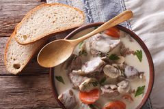 Blanquette of veal in a creamy sauce in a bowl. Horizontal top v Stock Images