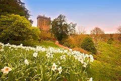 Blarney. Castle and garden Co.Cork, Ireland Royalty Free Stock Photos
