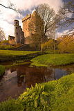 Blarney Stock Images