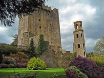 Blarney Beauty Royalty Free Stock Photos