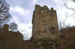 Blarney Castle. Window of blarney castle - cork ireland Royalty Free Stock Photography