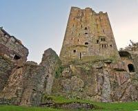 Blarney Castle. Part ruins of Blarney Castle Ireland Stock Photo
