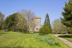 Blarney Castle. In Co. Cork, Ireland Stock Images