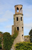 Blarney castle Royalty Free Stock Image